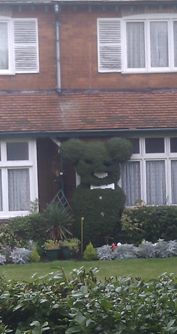 Freaky topiary