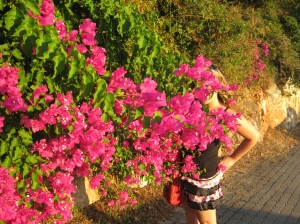 Hiding myself in the Bougainvillea! - Kefalonia, 2010.